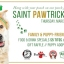 Saint Pawtrick's Day