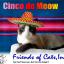 Cinco De Meow 2016