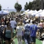 10th Annual Cardiff Dog Days of Summer
