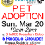Pet Adoption Event at Shades Oceanfront Bistro 2016