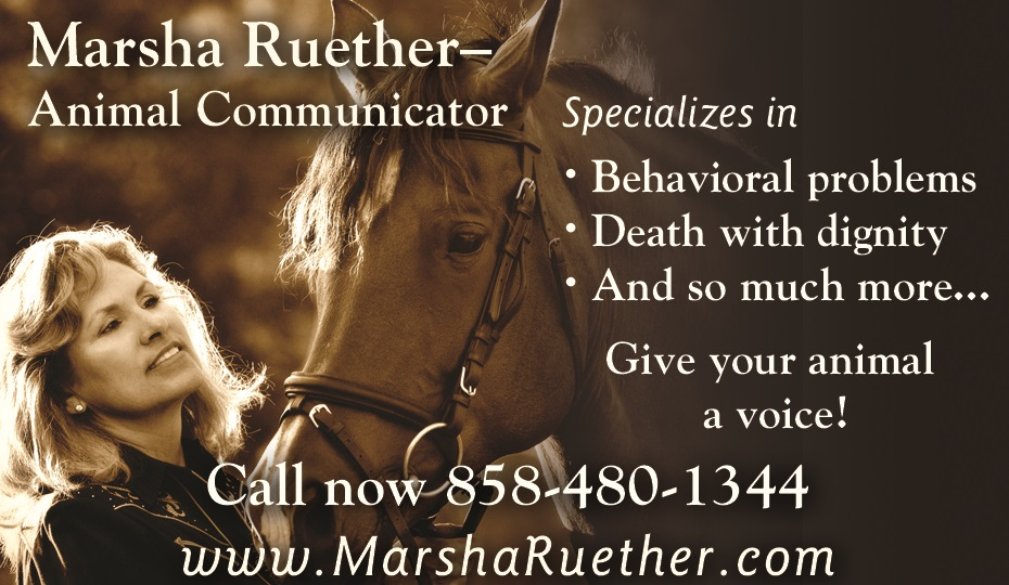 Marsha_RuetherAnimal_Communicator_ad_final