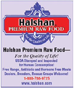 halshan_raw_food
