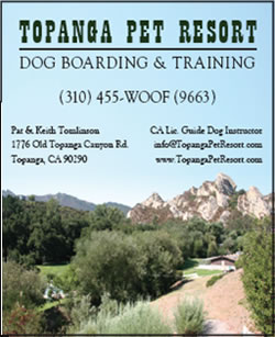 topanga_pet_resort