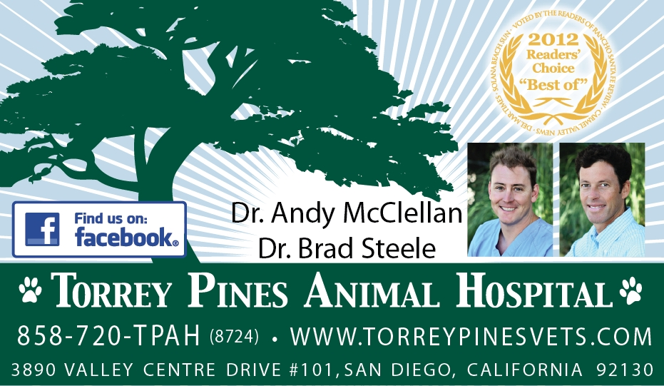 torrey_pines_hosp.JPG_final